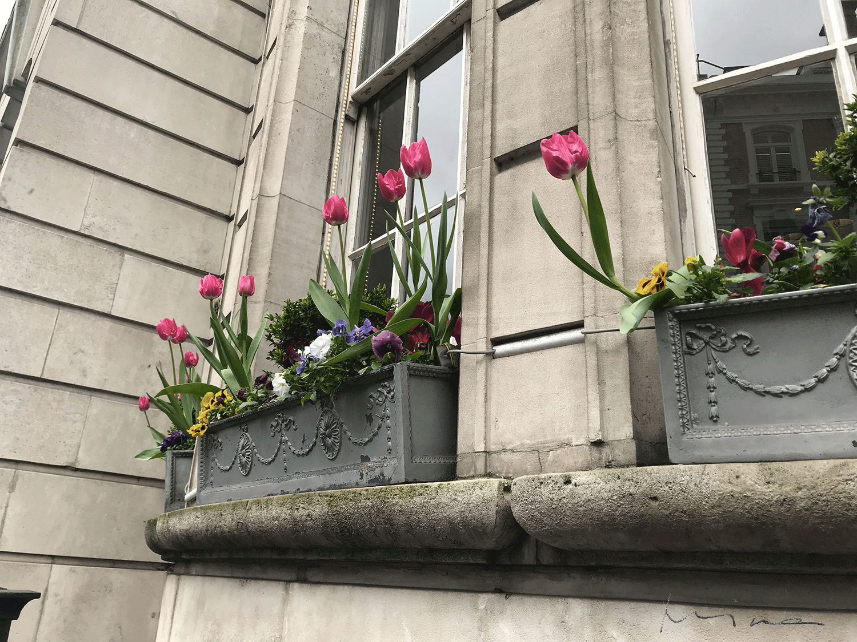 Kukkiva Lontoo