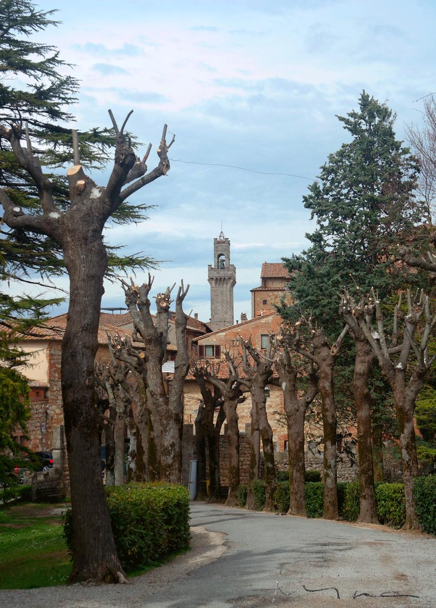 Montepulciano torni