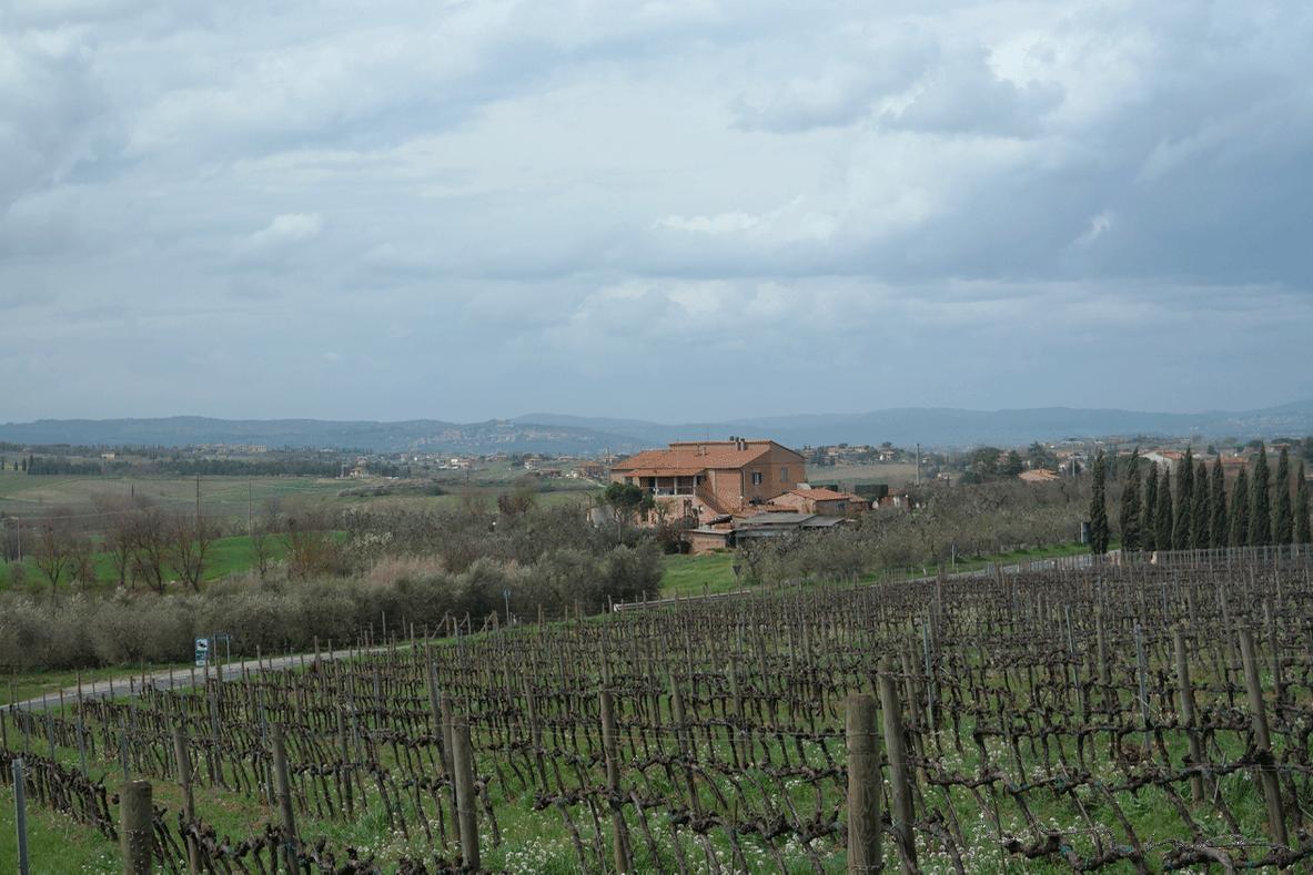 Matkalla Montepulcianoon